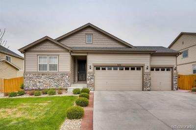 Aurora Single Family Home Active: 6214 South Ider Way