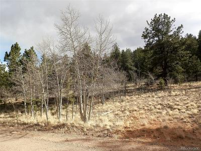 Hartsel Residential Lots & Land Active: 1299 Bridle Path