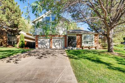 Westminster Single Family Home Active: 10350 Irving Court