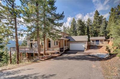 Conifer Single Family Home Active: 27324 Arrowhead Lane