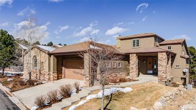 Colorado Springs Condo/Townhouse Active: 1066 Summer Spring View