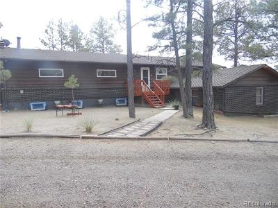 Elbert County Single Family Home Active: 24160 Agate Trail