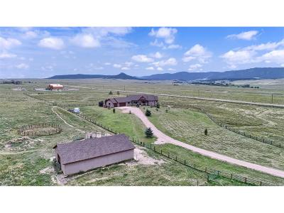 Larkspur CO Single Family Home Active: $935,000