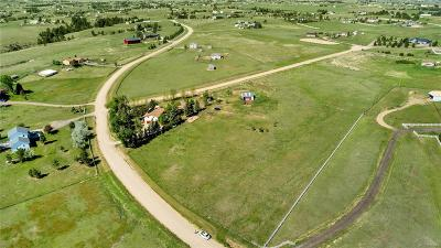 Elbert County Single Family Home Active: 42539 Ricki Drive