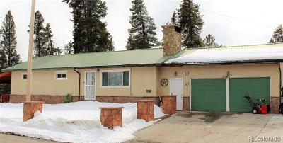 Leadville Single Family Home Active: 1600 Mount Lincoln Drive