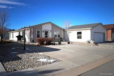 Buena Vista Single Family Home Active: 27665 County Road 313 #17