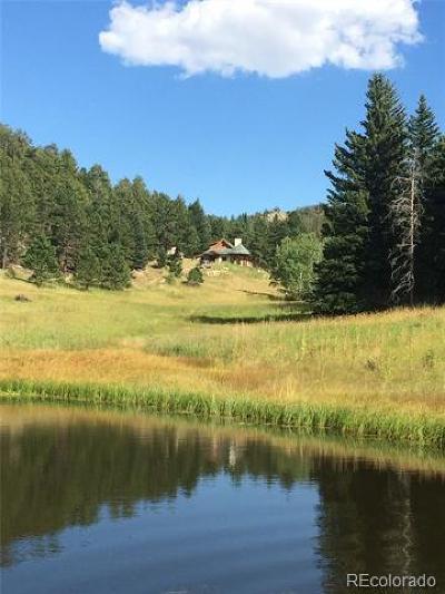 Estes Park Single Family Home Active: 4333 Hell Canyon Road