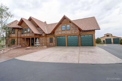 Castle Rock Single Family Home Active: 2279 Stevens Court