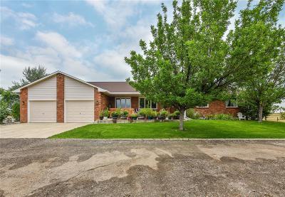 Berthoud Single Family Home Under Contract: 3010 Coyote Ridge Drive