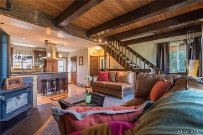 Steamboat Springs Condo/Townhouse Active: 1360 Sky View Lane #1