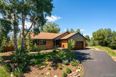 Steamboat Springs Single Family Home Active: 840 Conifer Circle