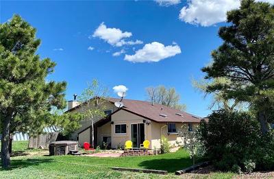 El Paso County Single Family Home Under Contract: 14180 North Ellicott Highway
