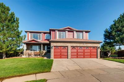 Denver Single Family Home Active: 4777 Ireland Court