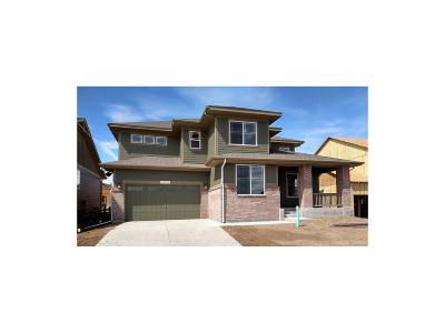 Parker Single Family Home Active: 20830 Scenic Park Drive