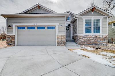 Parker CO Single Family Home Active: $440,000