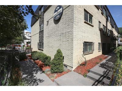 Cheeseman & Moffat, Cheeseman Park, Cheesman Park Condo/Townhouse Active: 1332 North Williams Street #303
