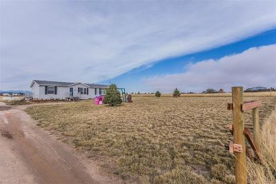 Single Family Home Active: 860 Antelope Drive