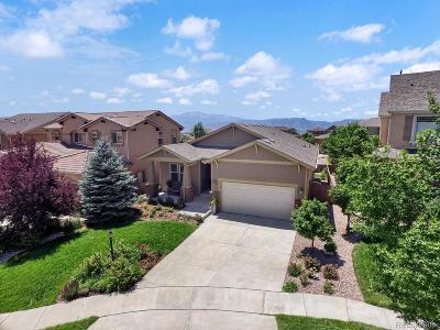 Colorado Springs Single Family Home Active: 9574 Roxborough Park Court
