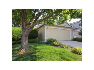 Highlands Ranch, Lone Tree Single Family Home Active: 9446 Devon Court