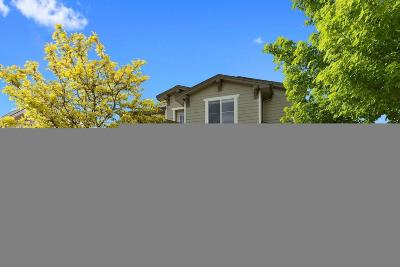 Highlands Ranch, Lone Tree Single Family Home Active: 10834 Brooklawn Road