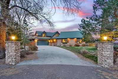 Manitou Springs Single Family Home Active: 202 Rockledge Court