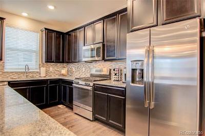 Parker Single Family Home Active: 8851 Concolor Lane