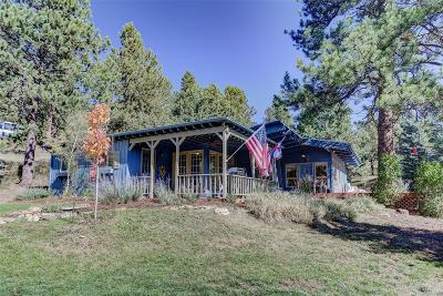 Evergreen Single Family Home Under Contract: 4090 South Skyline Drive