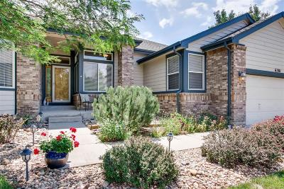 Arvada Single Family Home Active: 6381 Wier Way