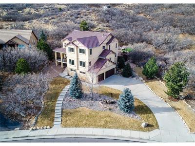 Colorado Springs Single Family Home Active: 5048 Briscoglen Drive