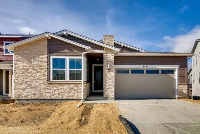 Castle Rock Single Family Home Active: 4797 Basalt Ridge Circle
