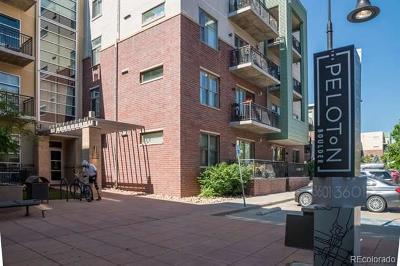 Boulder Condo/Townhouse Active: 3601 Arapahoe Avenue #204