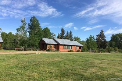 Routt County Condo/Townhouse Active: 54737 County Road 129 #Rabbit E