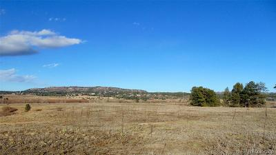 Douglas County Residential Lots & Land Under Contract: 4601 North State Highway 85