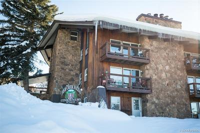 Steamboat Springs Condo/Townhouse Active: 465 Tamarack Drive #B-105