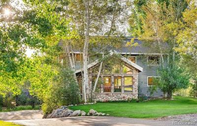 Steamboat Springs Single Family Home Active: 35 Copper Rose Court