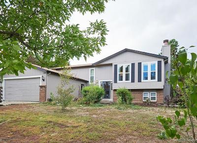 Castle Rock Single Family Home Under Contract: 810 Park View Place