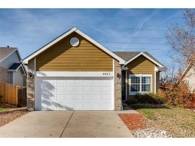 Aurora Single Family Home Active: 4027 South Himalaya Way
