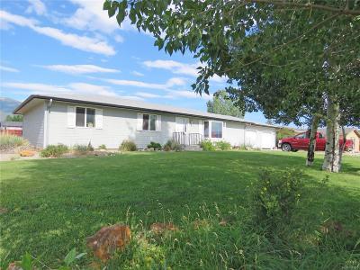 Buena Vista Single Family Home Under Contract: 172 Robert Drive