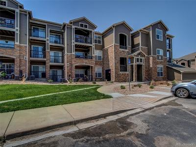 Erie Condo/Townhouse Under Contract: 3000 Blue Sky Circle #11-306