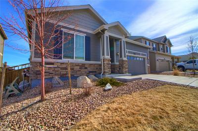 Castle Rock Single Family Home Active: 6214 Blue Water Circle