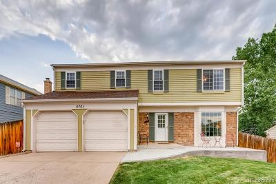 Single Family Home Under Contract: 4701 South Wright Way