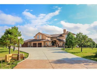 Castle Rock Single Family Home Active: 2649 Castle Crest Drive