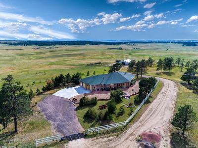 Elbert County Single Family Home Active: 30905 Ridge Road