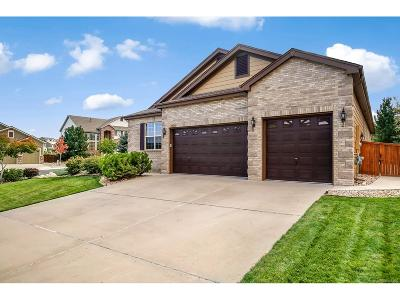 Castle Rock Single Family Home Under Contract: 1898 Rhodonite Court