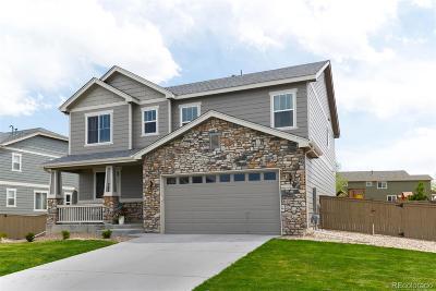 Castle Rock Single Family Home Active: 705 Springvale Road