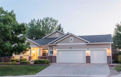 Arvada Single Family Home Active: 7167 Terry Circle