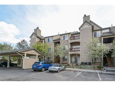 Condo/Townhouse Sold: 7479 South Alkire Street #203