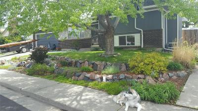 Broomfield Single Family Home Under Contract: 1150 Lilac Street