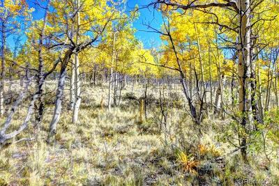 Como CO Residential Lots & Land Active: $29,900
