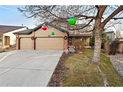 Littleton Single Family Home Under Contract: 6754 Lionshead Parkway